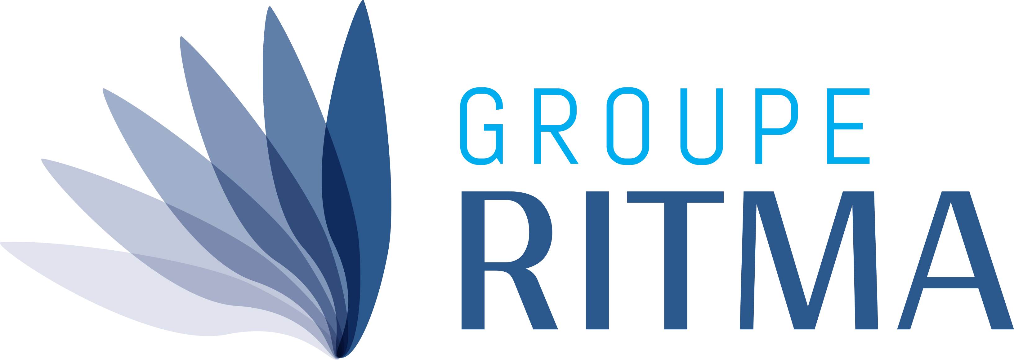 Groupe_RITMA_OUT